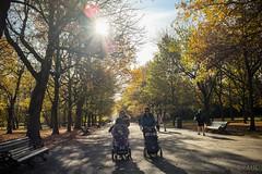 young mums out for a walk (PaulGibsonPhoto) Tags: london girls mums candid street regentspark stroller stroll walk autumn lensflare sunburst fuji fujifilm x100s