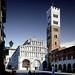 Lucca, Cattedrale di San Martino