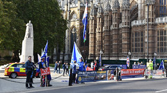 Brexit Demonstrators (Travis Pictures) Tags: london westminster cityofwestminster capitalsoftheworld tourism tourists politics people faces person sunny outdoors day nikon d7200 photoshop capitalcity parliamentsquare brexit protest demonstration uk britain britishpolitics eu europe
