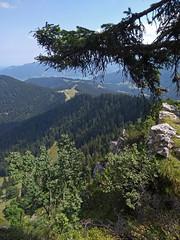 Still climbing... (aniko e) Tags: lake forest trees mountains hiking outdoor landscape summer fockenstein aueralm tegernsee bavaria bavarianprealps bayern bayerischevoralpen rocks