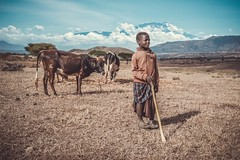 The Little Maasai of The Kilimanjaro (u c c r o w) Tags: kilimanjaro tanzania mount mountain volcano herder shepherd little cow cows mountains africa african landscape clouds sky portrait uccrow happy maasai arusha child children