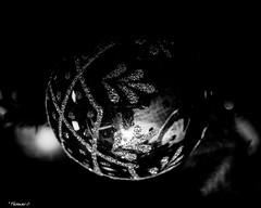 Beneath the Christmas Ornament (that_damn_duck) Tags: blackwhite monochrome christmasornament decoration christmas glitter bw blackandwhite nikon