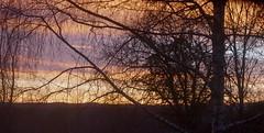Presque l'aurore, lever de soleil en décembre, Bosdarros, Béarn, Pyrénées Atlantiques, Nouvelle-Aquitaine, France. (byb64) Tags: béarn biarn bearno pyrénéesatlantiques bosdarros 64 pirinioatlantikoak paysage pirineosatlánticos pyrénées paesaggio paisaje landscape landschaft vue view vista veduta campagne campo field matin aube alba dawn aquitaine aquitania akitania aquitanien france francia frankreich europe eu europa ue ciel cielo sky couleurs colors colores colori nouvelleaquitaine leverdesoleil aurore sonneaufgang surnise orto aurora madrugada mañana morning morgen