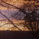 Presque l'aurore, lever de soleil en décembre, Bosdarros, Béarn, Pyrénées Atlantiques, Nouvelle-Aquitaine, France. thumbnail