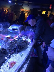 "2018-03-24-to-30-minnesotta-to-see-adam-and-sara-curl-with-family-aquarium-8_44899843202_o • <a style=""font-size:0.8em;"" href=""http://www.flickr.com/photos/109120354@N07/45494736864/"" target=""_blank"">View on Flickr</a>"