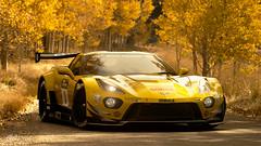 Gran Turismo Sport: Chevrolet Corvette C7 Gr.3 (Andy Voong) Tags: gran turismo chevrolet corvette c7