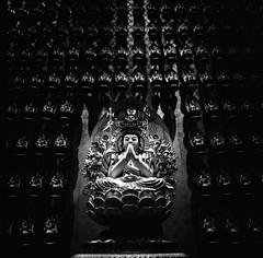 Pray. (monkeyanselm) Tags: carl zeiss cf 50mm f4 distagon hasselblad 500cm kodak trix singapore buddha analog film photography