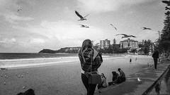 gulls, Manly beach, Sydney 2018  #013 (lynnb's snaps) Tags: tmaxdeveloper tmax3200 xa4 bw kodaktmaxp3200 2018 olympusxa4 pointandshootcameras zonefocus coast sydney ocean waves girl zuiko28mmf35macro grain blackandwhite bianconegro biancoenero blackwhite bianconero blancoynegro noiretblanc schwarzweis monochrome ishootfilm manlybeach australia sand seagulls birds