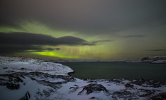 Aurora polaris (tranqvilizator) Tags: auroraborealis aurora night polarregion landscape nature barentssea sea sigma20mmf14