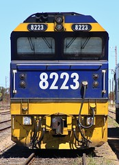 8223 in Tailem Bend (bukk05) Tags: 8223 railpage:class=51 railpage:loco=8223 rpaunsw82class rpaunsw82class8223 82class world explore export engine earth electromotivediesel jt42c emd emd12710g3a coorongdistrictcouncil banker mallee riverlands railway railroad railpage rp3 rail railwaystation railwaystations train tracks tamron tamron16300 trains yard photograph photo pn pacificnational loco locomotive horsepower hp flickr freight diesel dieselelectriclocomotive station standardgauge sg spring southaustralia southaustralianrailways sa 2018 zoom tailembend canon60d canon clyde clydeengineering mainline freightcorp