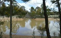 144 Fernleigh Close, Windellama NSW