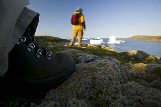 Newfoundland Caribou and Moose Hunting 13