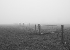 IMGP7310 (graemes83) Tags: pentax fog lyme park national trust mist foggy misty outdoors