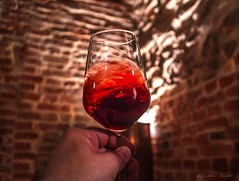 Italian taste (Cristiano Busato) Tags: piemonte nebbiolo vino wine piedmont italy wonderfulitaly