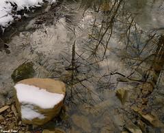 Reflet dans le ruisseau de Château Renaud - Crouzet MIgette (francky25) Tags: reflet dans le ruisseau de château renaund crouzet migette hiver franchecomté doubs eau vive
