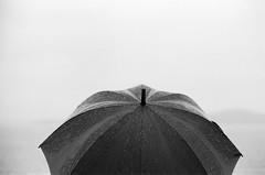maritime downpour (doublecappuccino) Tags: leicam3 noctilux noctilux50mmf095 trix kodaktrix400 umbrella rain sf aquaticpark