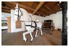 Rijtuigmuseum Nienoord (leo.roos) Tags: rijtuigmuseum carriagemuseum rijtuig carriage horse paard estate manor landgoed borg nienoord kopvandrentheseptember2016 a7s voigtlanderheliarhyperwide10mmf56 voigtlander1056 emount cosina cv darosa leoroos groningen