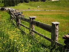 Happy Fence Friday (Ostseetroll) Tags: geo:lat=4705301908 geo:lon=1213656423 geotagged ita italien kasern südtirol taufererahrntal happyfence zaun fence valleaurina olympus em5markii