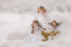 Angels (Inka56) Tags: lookingcloseonfriday angels toys smalltoys snow christmasdecoration christmas stars supertakumar55mm closeup bokeh wings