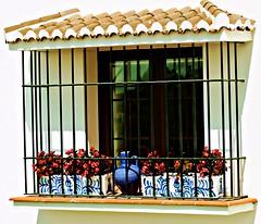 Window 18 (portalealba) Tags: cómpeta portalealba canon eos1300d flores axarquía málaga andalucía españa spain