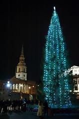2018 Christmas lights in Central London - 51 - Trafalgar Square (D.Ski) Tags: christmas lights 2018 london centrallondon illuminations nikon nikond700 d700 2470mm uk england trafalgarsquare tree norwegian