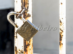 Alf Ribeiro 0265-21 (Alf Ribeiro) Tags: brazil brazilian building city close closeup jail macro metal street ancient background bars business chain door gate grunge home house illustration iron key link lock master material metallic nobody object old open padlock prison protect protection rust safe safeguard safety secure security shape silver single steel suspended symbol vintage white