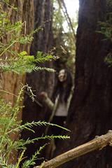 KLoE_img_9950 (kloe_chan) Tags: joaquin miller park hike oakland berkeley bay area family trees