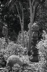 Garden Sculptures (Haruhara_Izzy) Tags: leica standard 35mm ilford hp5 id11 canoscan 9000f waiuku