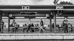 22/365 Train spotters - Explored (chesterr) Tags: 365the2019edition 3652019 day22365 22jan19
