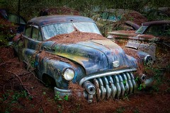 Derelict (Curt Bianchi) Tags: buick rust old car city 1950s