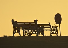Bench Silhouette Sunrise - Newbiggin-By-The-Sea (Gilli8888) Tags: nikon p900 coolpix northumberland newbigginbythesea newbiggin northsea beach sand coast coastal shore seaside seascape sun dawn sea water marine bench seat linear silhouette silhouettephotography lifebelt
