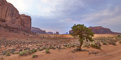 Mystery Valley (Valley Imagery) Tags: mystery valley monument utah arizona