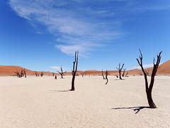 P1107650-LR (carlo) Tags: namibia panasonic dmcg9 g9 africa desert deserto landscape africanlandscape sossusvlei deadvlei