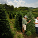 Farmer Joey Clawson (left) and extension agent Eddy Labus discuss fraser firs at Panoramic View Christmas Tree Farm in Watauga County, outside Boone.