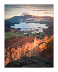 Creeping Sun (Dave Fieldhouse Photography) Tags: lakedistrict lake lakes lakeland derwentwater cumbria skiddaw kingshow autumn lateafternoon sunset water mountains fells manestypark landscape outdoors countryside nationalpark clouds keswick trees bracken hills flood fuji fujifilm fujixt2 wwwdavefieldhousephotographycom