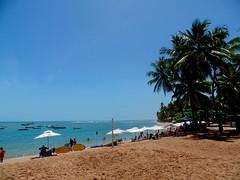 Praia do Forte - Bahia (aldec_br) Tags: praia beach plage playa spiaggia brazil brasil brasile bahia