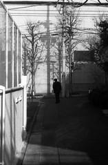 配電 (distribution) (Dinasty_Oomae) Tags: welta weltini ウェルタ ウェルティニ 白黒写真 白黒 monochrome blackandwhite blackwhite bw outdoor 東京都 東京 tokyo 港区 北青山 minatoku kitaaoyama 影 shadow 電柱 utilitypole