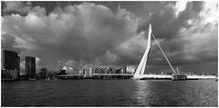 Erasmusbrug Rotterdam (Rob Schop) Tags: storm rotterdam sunset weather erasmusbrug bw monochrome sonya6000 samyang12mmf20 f56 clouds contrast maas pola hoyaprofilters handhold