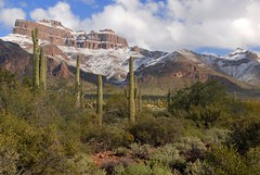Superstition20151 (ONE/MILLION) Tags: vacation travel tours visit outdoors superstition mountains church blue sky snow clouds golf course canyon lake cactus williestark onemillion saguaro rocks mailbox colorful weather lost dutchman gold mine history