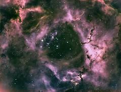 Rosette Nebula (NGC 2244) (David's Adventures) Tags: rosettenebula deepsky night telescope astronomy 1100gto astrophysics astrodon tec140 ha sii oii astrophotography asi1600mm ngc 2244 astrometrydotnet:id=nova3185192 astrometrydotnet:status=solved