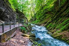 Thurfälle (olle.graf) Tags: 2018 olle fluss fujifilm may meadow river schweiz switzerland thur thurfã¤lle toggenburg unterwasser wasser water wiese xe2 altsanktjohann sanktgallen ch thurfälle