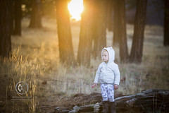 BigBearThanksgiving18_58 (wrightontheroad) Tags: bigbear california childphotography children cold cutekids fall familyportrait forest kids mountains portrait toddlers winterclothing unitedstates