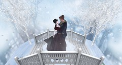 Entrance no.340 (Curiosse) Tags: bridge pose scene prop gown wine winter 2018 poe hunt gifts christmas couple love