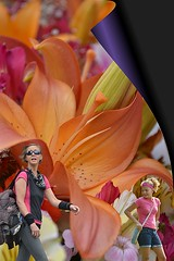 Flower World (Scott 97006) Tags: illusion perspective flowers pretty beauty woman girls females poster art colors people wall wallflower gorgeous shrink small fairytale