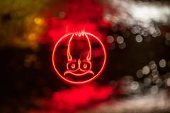 Uggla (englishgolfer) Tags: fs190113 fotosondag nyarslofte reflection puddle owl uggla uddevalla sweden sverige nikon d7500 55200mm