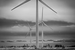 Rural sky scrapers (Dan Fleury Photos) Tags: rural greenenergy windpower energy wind turbine cans2s bigsky cloud sky blackandwhite white black bnw canada ontario ygk kingston wolfeisland wolfe island