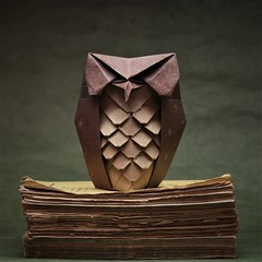 Owl with feathers - Yoshio Tsuda (pierreyvesgallard) Tags: origami yoshio tsuda owl animal bird paper folding books