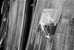 (a.pierre4840) Tags: olympus xa 35mm f28 35mmfilm ilford ilfordhp5 hp5 hp5plus bw blackandwhite monochrome noiretblanc reflection wood glass broken