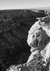 Natural Features (trainmann1) Tags: d7200 nikon amateur handheld nikkor 18200mm scenic oct october 2018 vacation fall outside outdoors bw blackandwhite blackwhite desaturated coloradonationalmonument monument nationalpark park rock rocks cliff lines nature earth