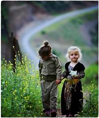 K U R D I S T A N  💛 (Kurdistan Photo كوردستان) Tags: کوردستانی کورد kurdistan کوردستان land democratic party koerdistan kurdistani kurdistán kurdistanê zagros zoregva zazaki zaxo zindî azadî azmar xebat xaneqînê christianity cegerxwin van love mahabad music arbil democracy freedom genocide herêmakurdistanê hawler hewler hewlêr halabja herêma judaism jerusalem kurdistan4all lalish qamishli qamislo qamishlî qasimlo war erbil efrînê refugee revolution rojava referendum yezidism yazidis yârsânism unhcr peshmerga peshmerge grass tree landscape field sky water river animal mountain rock mi people photo fantastic nature beautyfull world